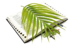 Bible Rosary Palm Sunday Royalty Free Stock Photography