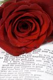 Bible and Rose. An open bible with a single red rose...  lost love Stock Images