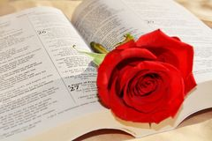 Bible and rose, love concept Stock Photo