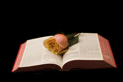 Bible and roses Royalty Free Stock Photos