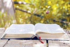 Bible rougeoyante ouverte en nature images stock