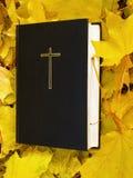 bible Sainte Bible avec les feuilles d'automne tombées Images libres de droits