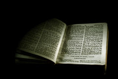 Bible series leviticus sepia Stock Image