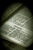 Bible Series Obadiah sepia Stock Photos