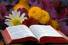 Bible Still life 1 Stock Images