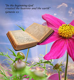 Bible story of creation. Photo depiction of the bibles story of creation with the open pages of the bible in the form of a butterfly resting on the petal of a Royalty Free Stock Photography