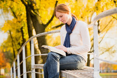 Bible Study in a Park Stock Photo