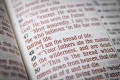 Bible text - I am the bread of life - John 6:48 Royalty Free Stock Photos