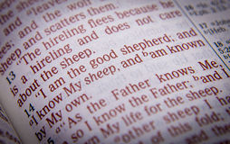 Bible text - I am the good shepherd - John 10:14 Royalty Free Stock Images