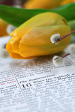 Bible with text in Mark 16 about Resurrection. Open Bible with selective focus on the text in Mark 16 about Jesus' resurrection. Shallow DOF Royalty Free Stock Photo