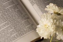 Bible (vue 2) Photographie stock libre de droits