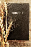 Bible_with_wheat 库存照片
