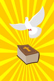 Bible and White Dove symbols of Christianity. Pure white dove b Stock Photography