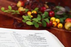 Biblia de la acción de gracias Fotografía de archivo libre de regalías
