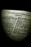 biblia exodusu szereg sepiowe Obrazy Royalty Free