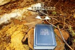 Biblia hebrea o Tanakh - Torah, Neviim, Ketuvim - y palmatoria judía Menorah Imagen del día de fiesta judío Jánuca foto de archivo libre de regalías