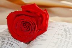 Biblia i róża, miłości pojęcie, zakończenie up obrazy royalty free