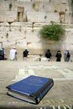 Biblia judía en el vector Fotos de archivo