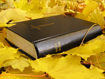 Biblia Libro de la Sagrada Biblia con las hojas de arce amarillas Fotos de archivo libres de regalías
