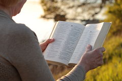 Biblia madura de la lectura de la mujer Imagen de archivo libre de regalías