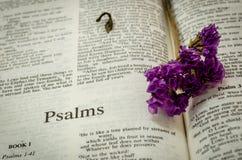 Biblia: Salmos Fotografía de archivo libre de regalías