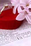 Biblia y anillo de compromiso Fotos de archivo libres de regalías