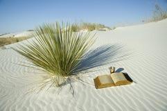 Biblia y taza en el desierto blanco Foto de archivo
