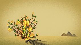 The Biblical Burning Bush And Pyramids In The Desert