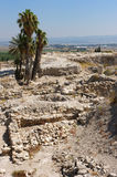 Biblical place of Israel: Megiddo Royalty Free Stock Photos