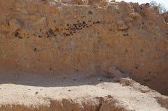 Biblical Tamar park, Arava, South Israel Royalty Free Stock Photos