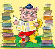 Bibliophile - pig. The clever pig wearing spectacles sits at a armchair between two tower from books and reads the newspaper Royalty Free Stock Photos