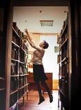 bibliotecário Fotografia de Stock