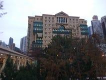 Biblioteca in CBD Fotografie Stock