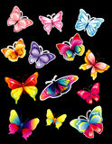 Biblioteca da borboleta Fotografia de Stock