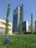 Biblioteca de árboles, el nuevo parque de Milán que pasa por alto el della Regione Lombardia, rascacielos de Palazzo 29 de marzo  Fotografía de archivo