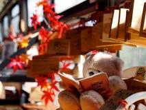 A biblioteca de um urso bonito fotos de stock royalty free