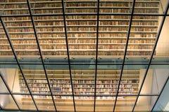Biblioteca nacional de Letonia, Riga, Letonia Imágenes de archivo libres de regalías