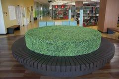biblioteczna okrąg roślina Obrazy Stock