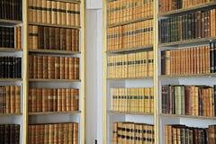 biblioteka Zdjęcia Stock