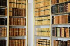 biblioteka Obrazy Stock