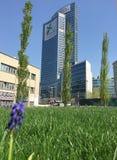 Biblioteka drzewa nowy Mediolan park przegapia Palazzo della Regione Lombardia, drapacz chmur Marzec 29, 2017 Fotografia Royalty Free