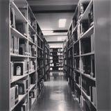 bibliothèque Images stock
