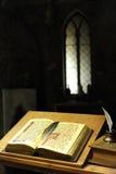 Bibliothèque antique Photographie stock libre de droits