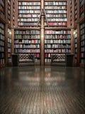 Bibliothèque complète Photographie stock libre de droits