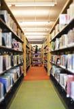 Bibliothecaris in schoolbibliotheek stock afbeeldingen
