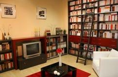 Bibliotheek 2 van het huis royalty-vrije stock afbeelding