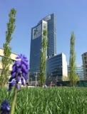 Bibliotheek van bomen, het nieuwe park die van Milaan Palazzo-della Regione Lombardia, wolkenkrabber overzien Stock Afbeeldingen