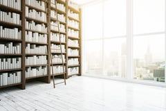 Bibliotheekbinnenland Royalty-vrije Stock Afbeeldingen