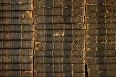 Bibliothek von alten Büchern Stockfotos