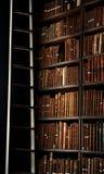 Bibliotheks-Bücherregal stockfoto